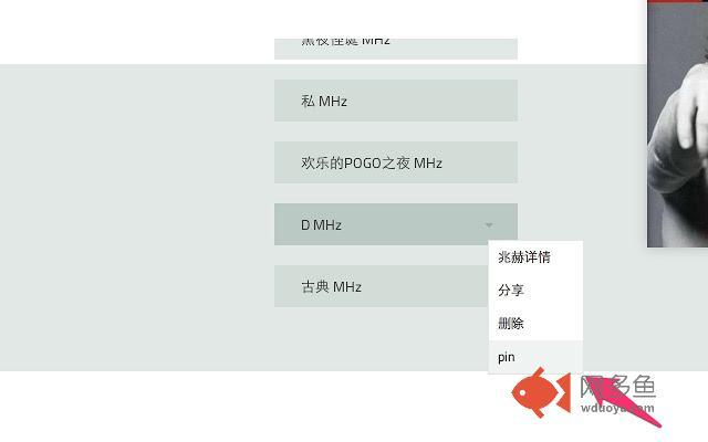 doubanfm channel pin插件截图