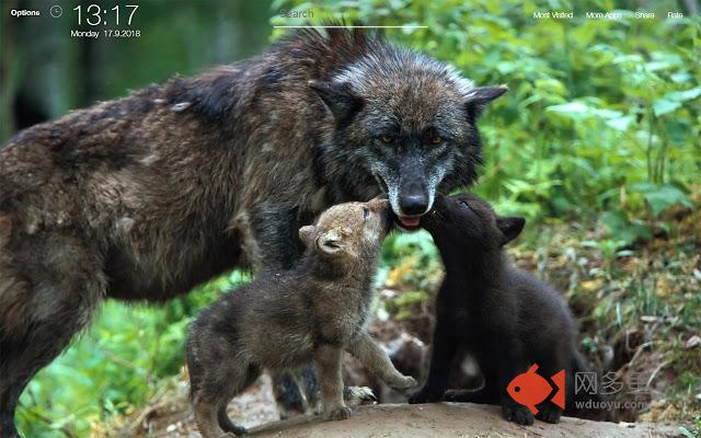 Baby Animals Wallpapers HD Backgrounds插件截图