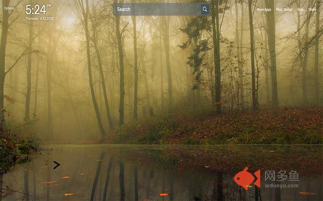 Fog Wallpapers NewTab Theme插件截图