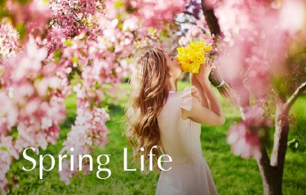 Spring Life HD Wallpaper New Tab Theme插件截图