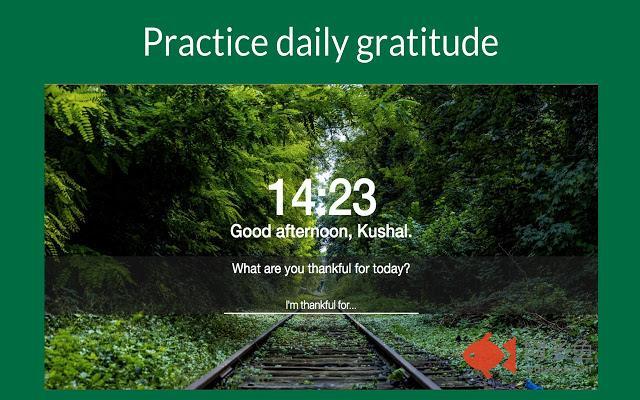 Gratitude Flow: Happiness Dashboard插件截图
