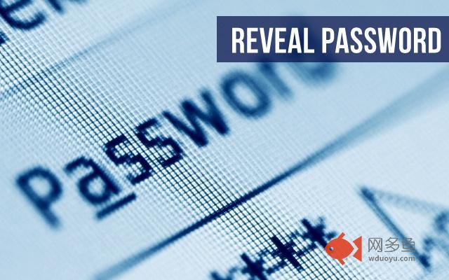 Show Password插件截图